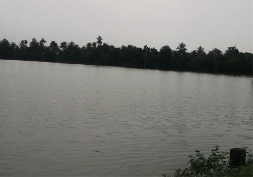aleppeybackwaters