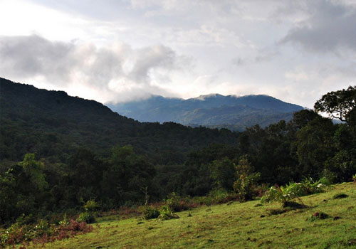 coorg-hillstations2